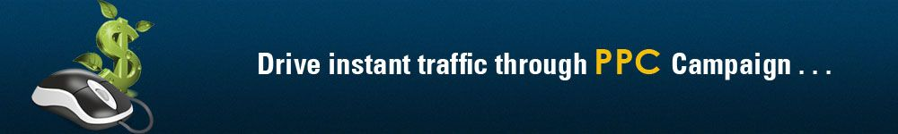 drive instant traffic through PPC Campaign
