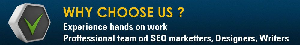 experience hands on work professional team od seo marketers , designers, writers